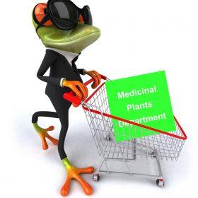 دپارتمان گیاهان دارویی